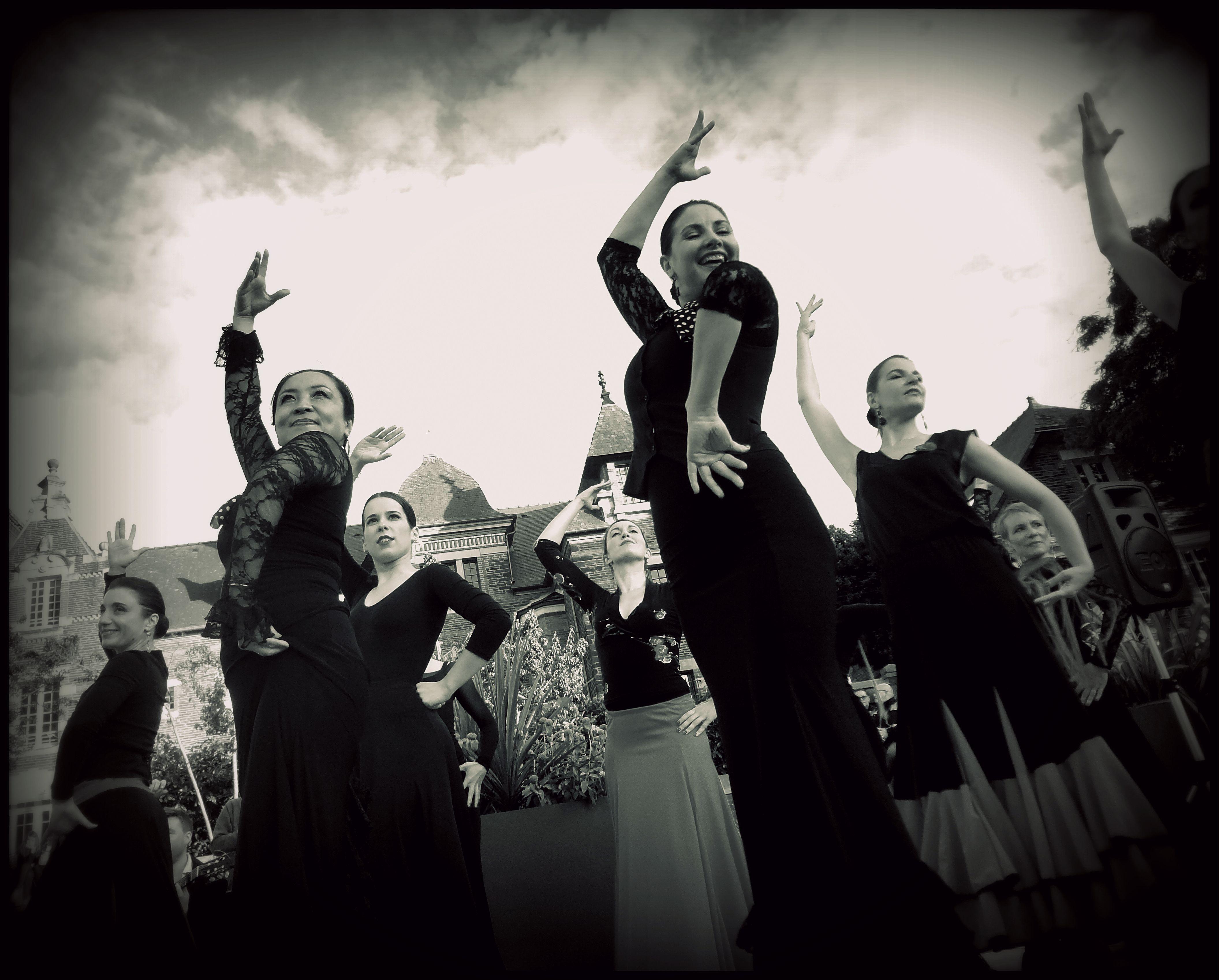 Flamenco celeste D